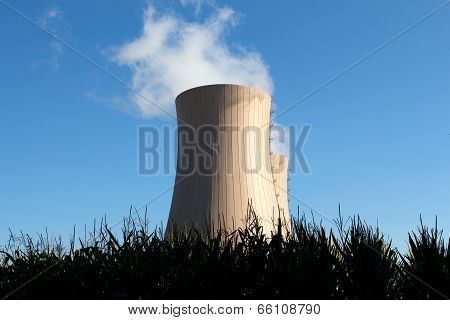 Corn Field Against Nuclear  Plant