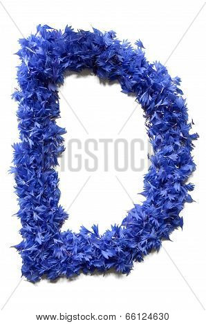 Letter D Made Of Flowers (cornflowers) Isolated On White Background