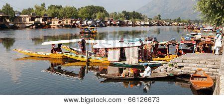 Shikara boats on Dal Lake with houseboats in Srinagar