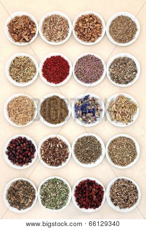 Medicinal herb selection also used in witches magical potions in white porcelain bowls over mottled handmade paper background.