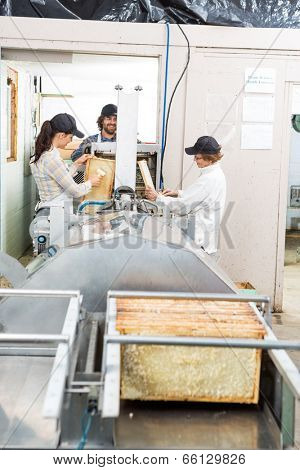 Male and female beekeepers extracting honey from machine in beekeeping factory