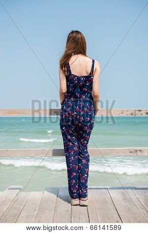 Back Of A Girl Looking Into The Sea