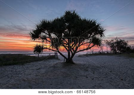 Currumbin Beach Sunrise, Gold Coast, Australia