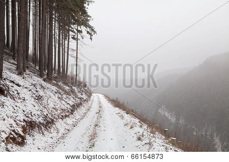 Foggy Winter Day In Mountains
