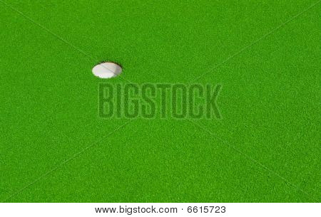 The Green Goal