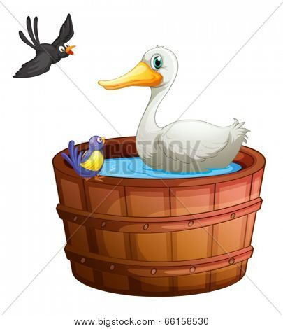 Illustration of a bathtub with birds on a white background