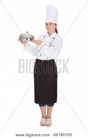 Portrait Of Female Chef Holding Tray