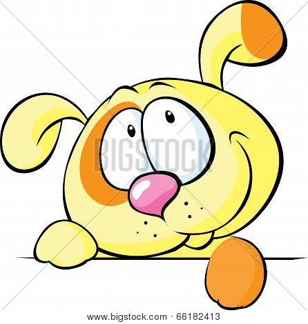 Cute Yellow Dog Peeking From White Desk