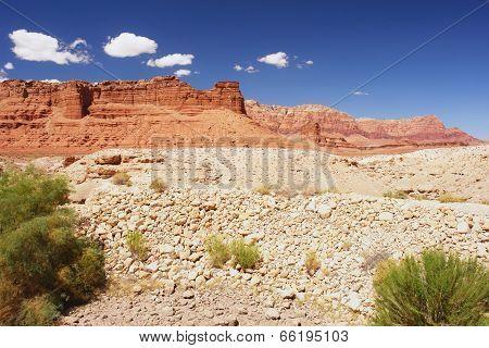 Echo Cliffs, Arizona