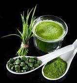 stock photo of chlorella  - Young barley and chlorella spirulina - JPG