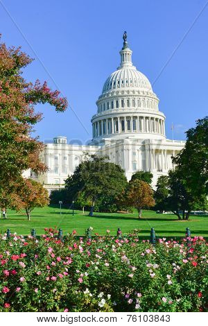 US Capitol - Washington DC, United States of America
