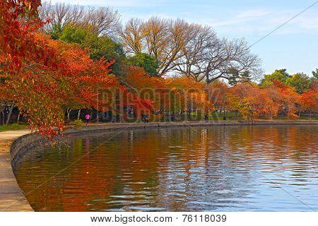 Trees in autumn foliage along Tidal Basin walkway Washington DC.