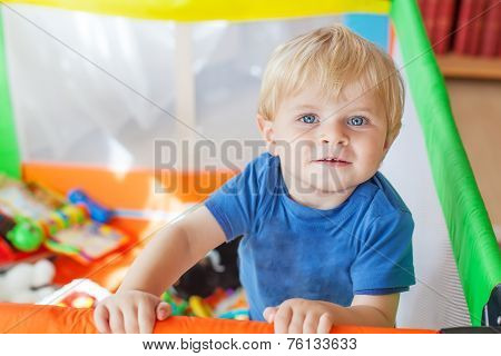 Cute Little Baby Boy Playing In Colorful Playpen, Indoors