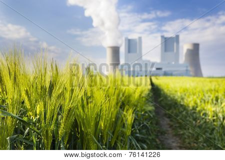 Power Station And Rye Field