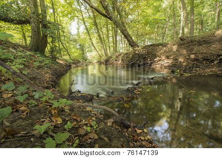 Protected Brook in the Netherlands
