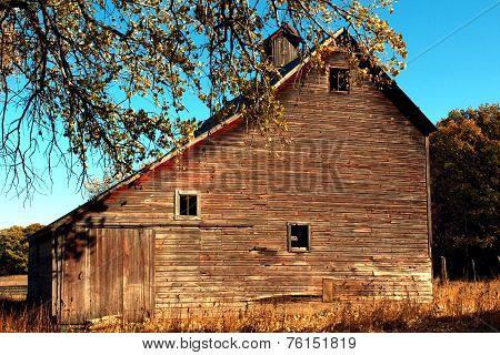 Rustic Old Barn Surrounded with Trees
