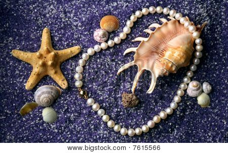 Pearl Necklace With Sea Shell And Starfishes On Lilac Sand