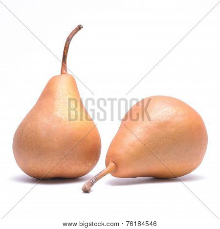 Two kaiser pears