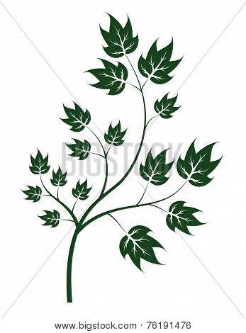 vector brunch of tree