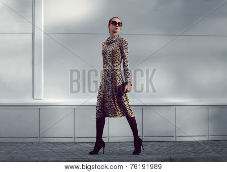 Street Fashion Concept - Pretty Elegant Woman In Leopard Dress And Sunglasses Posing In The City