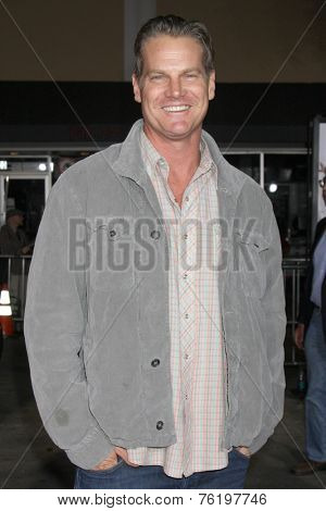 LOS ANGELES - NOV 3:  Brian Van Holt at the Dumb and Dumber To Premiere at the Village Theater on November 3, 2014 in Los Angeles, CA
