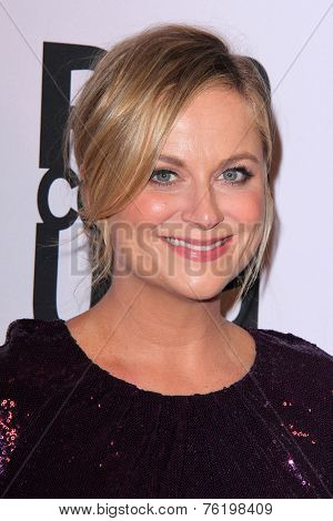 LOS ANGELES - NOV 11:  Amy Poehler at the PEN Center USA 24th Annual Literary Awards at the Beverly Wilshire Hotel on November 11, 2014 in Beverly Hills, CA