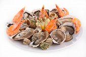 picture of whelk  - seafood platter - JPG