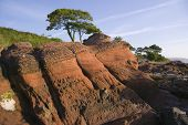 stock photo of bute  - Beds of old red sandstone exposed on the eastern shore of Bute - JPG