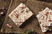 picture of white bark  - Homemade Holiday Peppermint Bark with White and Dark Chocolate - JPG