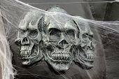 foto of horrific  - Horrific decor of terrific skulls and web spiders - JPG