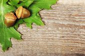 picture of acorn  - Acorns and oak leaves on old wooden background - JPG
