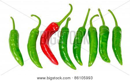 Green And Red Chili Pepper Isolated On A White Background