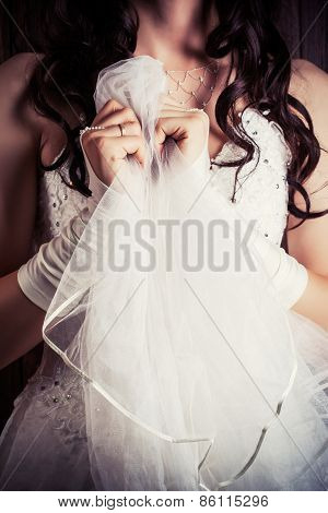 Bride Holding A Veil Against Wooden Background