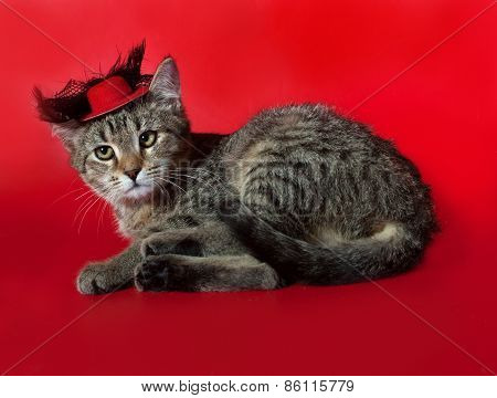 Striped Kitten Lying On Red In Red Hat
