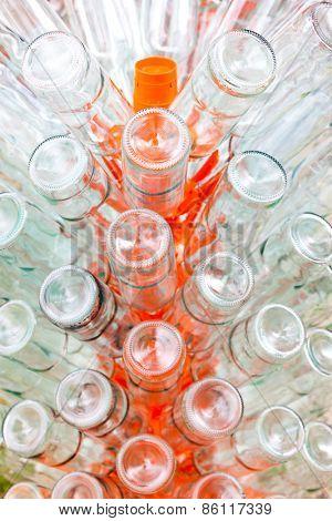 empty bottles of wine on rack