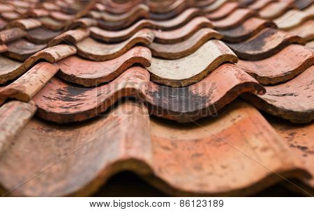 The Old Roof Covered With Orange Tiles