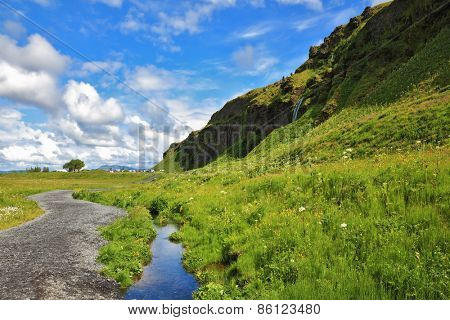 Green meadows and clear streams. The neighborhood Seljalandsfoss. Iceland in July