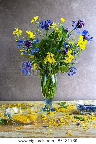 Still Life Bouquet Cornflowers Rape