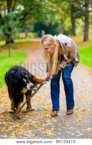 Woman and dog at retrieving stick game in fall park on dirt path