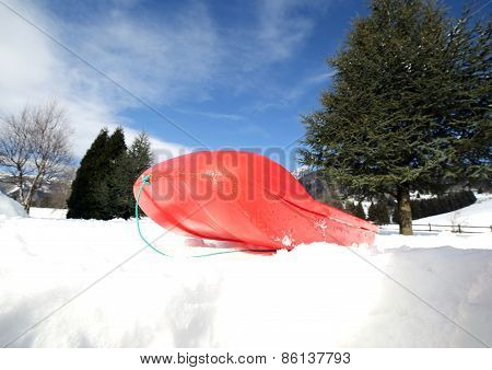 Red Bob To Play In The Snow In The Mountains In Winter