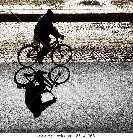 Back Lit Cyclist