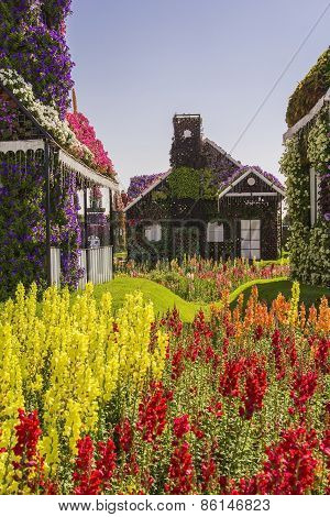 House of greenery and flowers in the park Miracle Garden