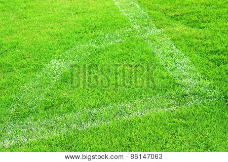 Green Lawns And Sports Turf For Soccer Athletes.