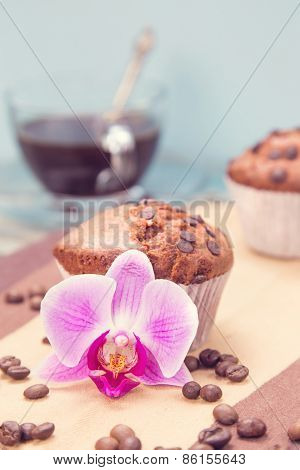 Muffin And Orchid