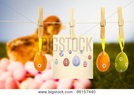 easter eggs against stuffed chick with easter eggs