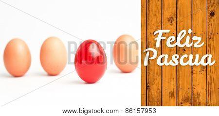Feliz pascua against wooden planks