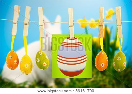 easter eggs against white fluffy bunny sitting beside daffodils with easter eggs