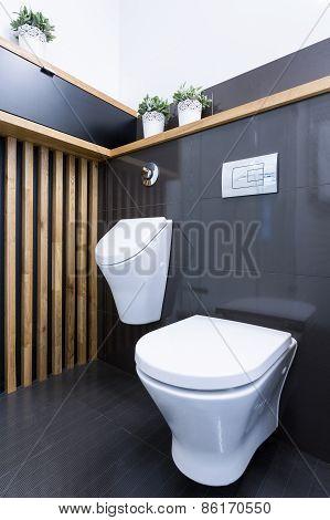 Beauty Luxury Toilet Interior