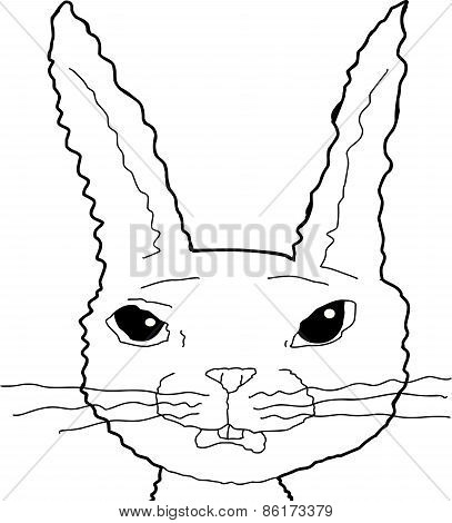 Scared Bunny Cartoon Outline