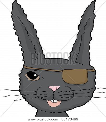 Black Rabbit With Eye Patch